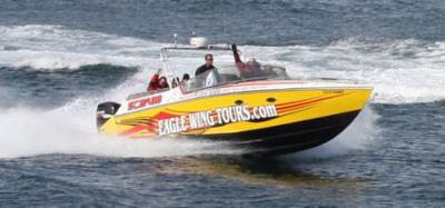 Eagle Wing Whale Watch Cigarette Boat